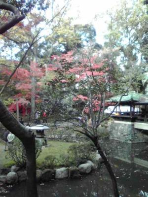 揚輝荘の庭園です